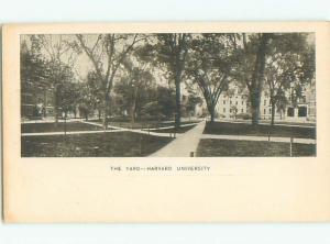 Unused Pre-1907 THE YARD AT HARVARD UNIVERSITY Cambridge Massachusetts MA Q1514