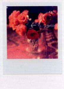 Bouquet Of Roses Award Analog Film Camera Photo Postcard