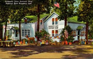 Kentucky Cave City Mammoth Cave Souvenir Shop 1951 Curteich
