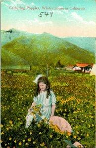 Vtg Reider Postal 1910s Reunión Amapolas En California Invierno sin Usar Unp