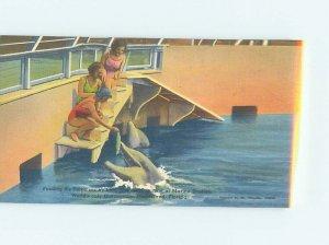 Linen MARINELAND SCENE Between Palm Coast & St. Augustine Florida FL AF9604