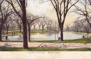 Frog Pond Common Boston Massachusetts
