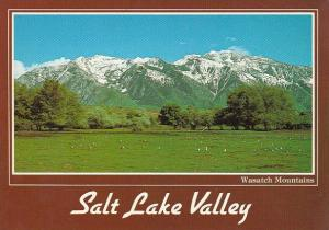 Utah Salt Lake Valley Wasatch Mountains