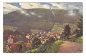 Bird's Eye View, Rennbachtal, Wildbad (Karlsruhe), Baden-Württemberg, German...