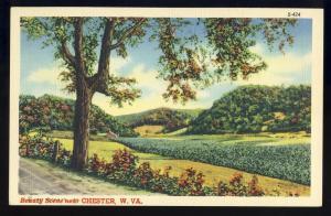 Chester, West Virginia/WV Postcard, Beauty Scene #S424