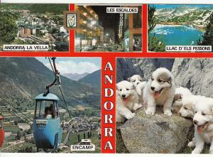 Andorra multi views puppy dogs cable car postcard