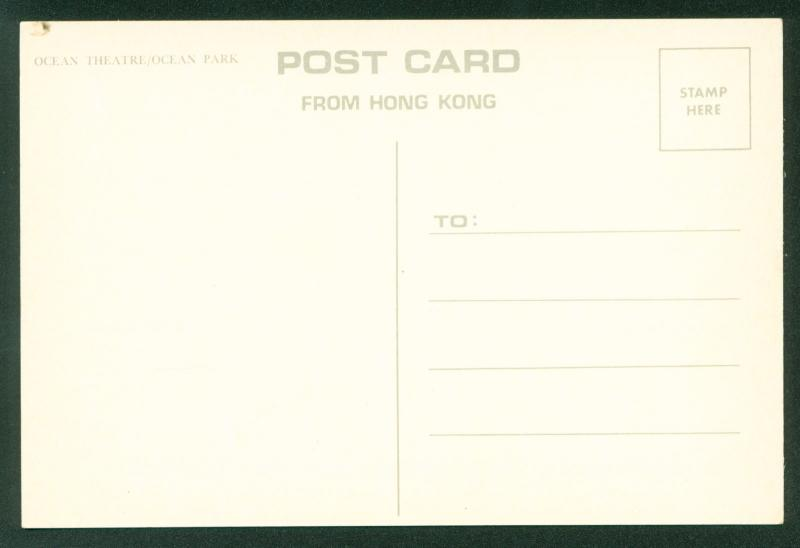Ocean Theater Theme Park Killer Whale Orca Hong Kong China Postcard