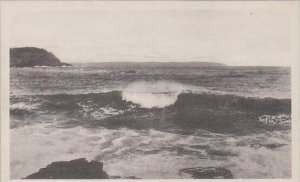 Maine Bar Harbor Surf Albertype