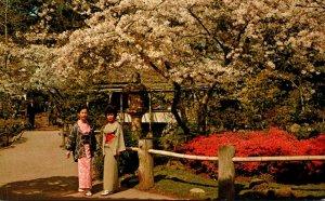 California San Francisco Golden Gate Park Japanese Tea Garden