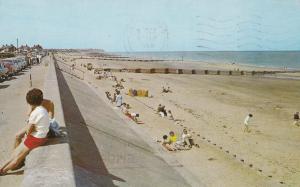 Bored Children at Walcott Promenade 1970s Postcard