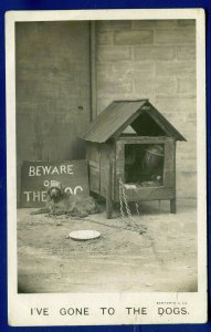 Beware of the Dog House & Chain Dish Dog chained real photo postcard RPPC posted