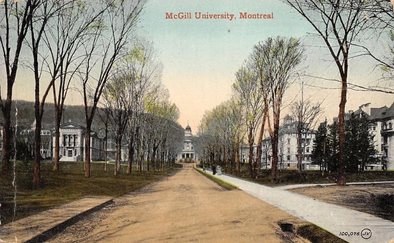 Montreal Canada~McGill University~Long Drive~Campus~1920 Postcard