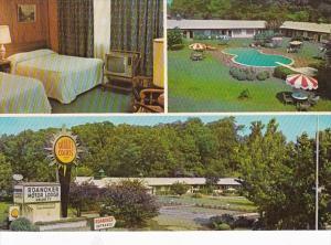 Virginia Roanoke Quality Motel Roanoker