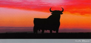 Spain Postcard, Toro, Bull, Costa Blanca OS247