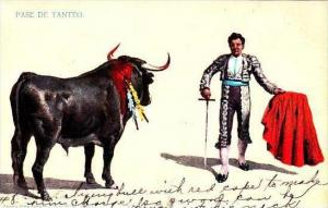 Mexico Bullfight Pase De Tanteo