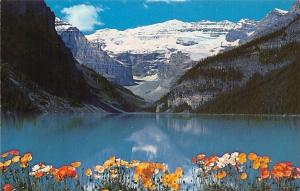 Canada Canadian Rockies, The Poppies Lake Louise Flowers Mountains Landscape