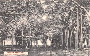 Calcutta India Interior Banian Tree, Botanical Gardens Calcutta Interior Bani...