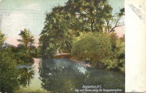 Binghamton New York~Bay & Willow Trees Along The Susquehanna River~1907 PC