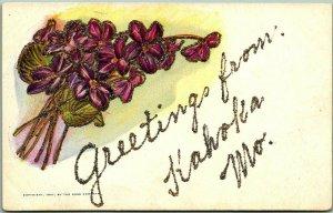 1910s KAHOKA Missouri Embossed Greetings Postcard Purple Flowers / Glitter