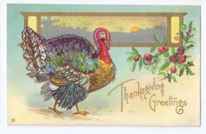 Thanksgiving Turkey Postcard Glitter added Gilt Cranberries Landscape Embossed
