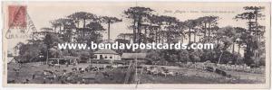 brazil, PORTO ALEGRE, Potreiro, Livestock Breeding (1920) Double Panorama PC
