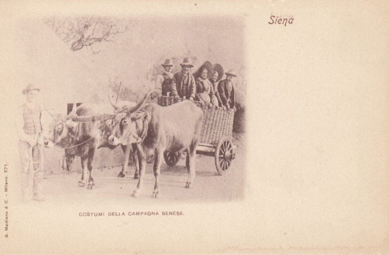 SIENA , Toscana , Italy , 1890s ; Costumi della Campagna Senese