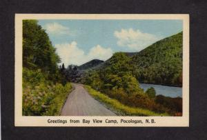NB Greetings From Bay View Camp Pocologan New Brunswick Carte Postale Canada