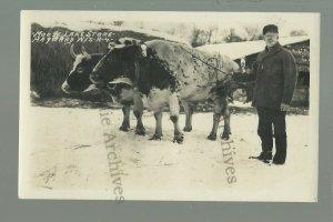 Hayward WISCONSIN RPPC c1920s COW TEAM Logging Camp MOOSE LAKE STORE Logs