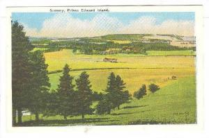 Scenery of open pasture, Prince Edward Island, Canada, 30-50s