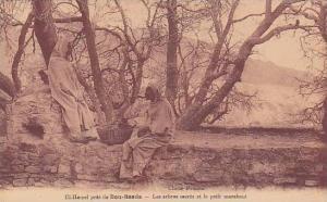 El Hamel Pres De Bou-Saada, Les Arbres Sacres Et Le Petit Marabout, M'Sila, A...