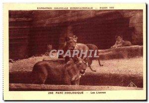 Old Postcard Exposition Coloniale Internationale Paris Zoo Lioness Lions