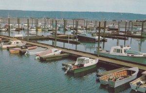 HOMER, Alaska, 1940-60s; New Boat Harbor on the Homer Spit