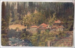 Shasta Springs CA