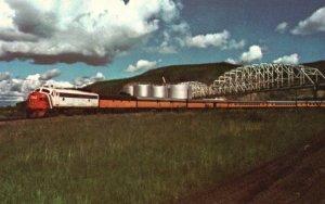 The Alaska Railroad, AK, Mile Post 411, Unused Chrome Vintage Postcard g9325