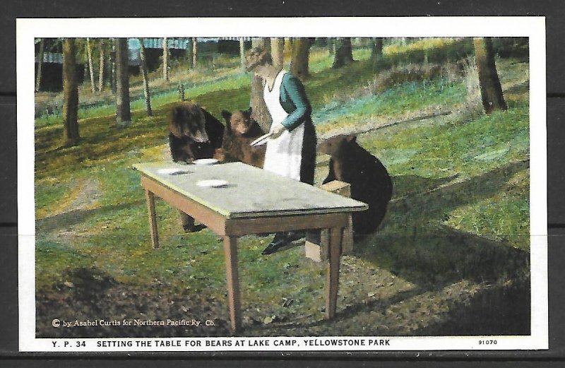 Wyoming, Yellowstone - Setting The Table For Bears - [WY-081]