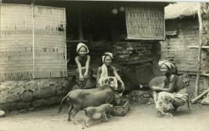 indonesia, BALI, Topless Nude Native Women feeding Pigs (1920s) RPPC Postcard