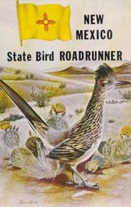 New Mexico State Bird The Roadrunner