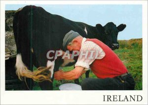Postcard Modern Ireland Milking Time near Slieve League Co Donegal Cow