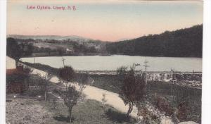 Lake Ophelia, Liberty, New York, PU-1908