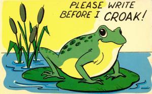 Comic - Please Write Before I Croak (Frog)