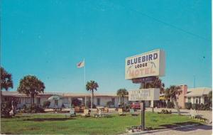 ORMOND BEACH - BLUEBIRD LODGE Motel 1950s view DEMOLISHED