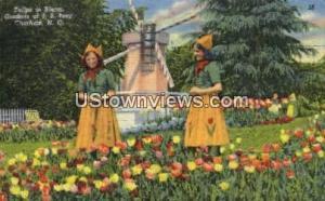 Gardens of J. B. Ivey Charlotte NC 1957