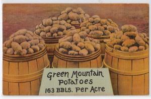Green Mountain Potatoes