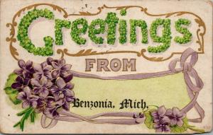 Benzonia Michigan~Large Letter Flower Greetings~Violets Bouquet~Emboss~1911 PC