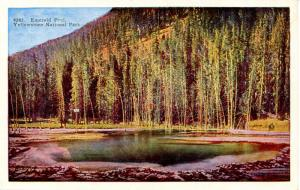 WY - Yellowstone National Park. Emerald Pool