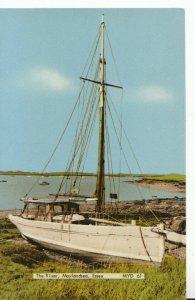 Essex Postcard - The River - Maylandsea - Essex - Ref TZ833