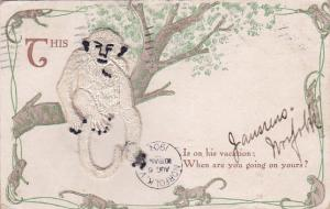 1907 This Monkey Is on his vacation: When are you going on yours?, Applique of