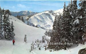 Hurricane Ridge Ski Area Olympic National Park, Washington, WA, USA Skiing Un...