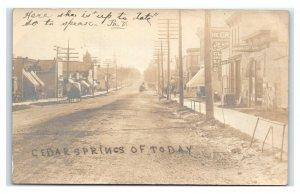 Postcard Cedar Springs of Today, Michigan MI Velox c1899-1905 RPPC N5