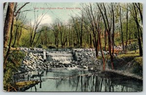Warren Minnesota~Soo Dam on Snake River~Surrounded by Trees~1909 Postcard